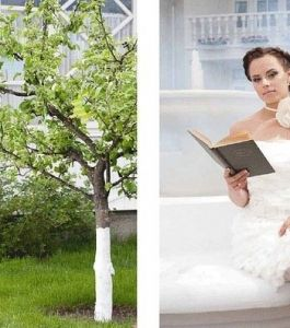 """ВOYKO BEAUTY SCHOOL для свадебного ж-ла """"Wedding"""""""